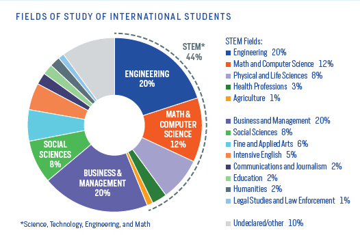 international students in the usa fields of study